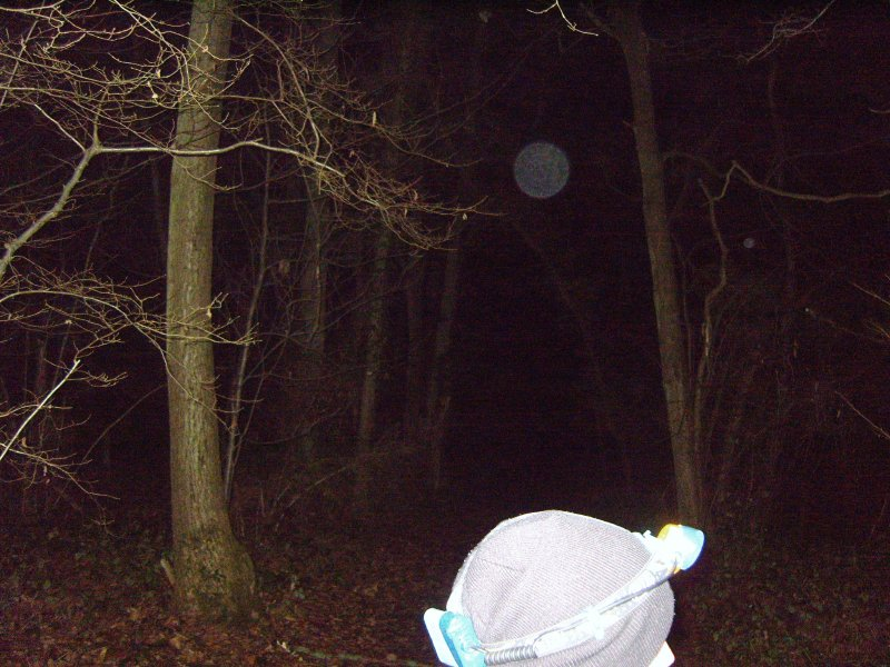 Pluckley Woods ghost hunt - Click to enlarge