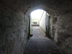 Beacon Hill Fort
